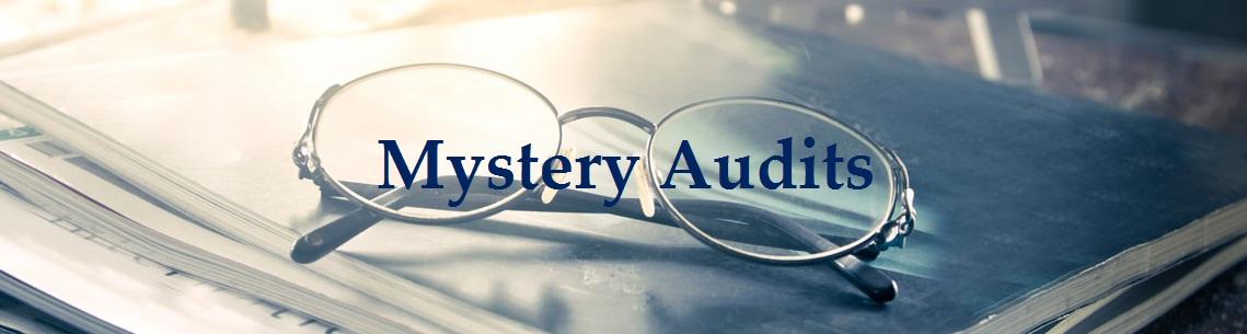 mistry-audits1